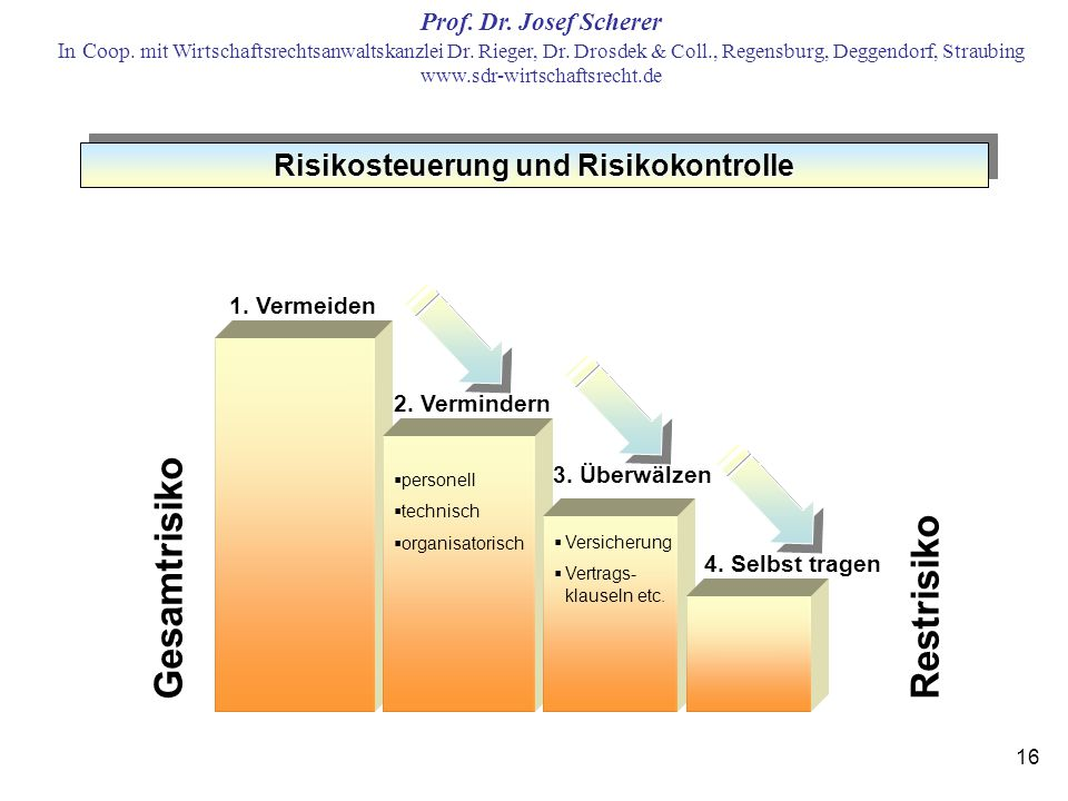 Risikosteuerung und Risikokontrolle
