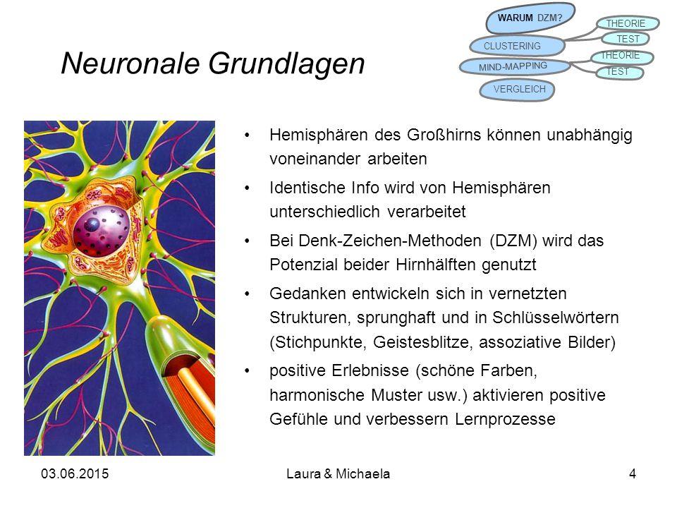 WARUM DZM CLUSTERING. THEORIE. TEST. MIND-MAPPING. VERGLEICH. Neuronale Grundlagen.