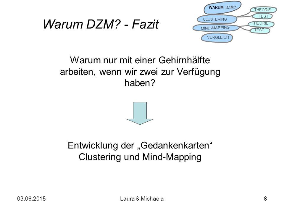 Warum DZM - Fazit Warum nur mit einer Gehirnhälfte