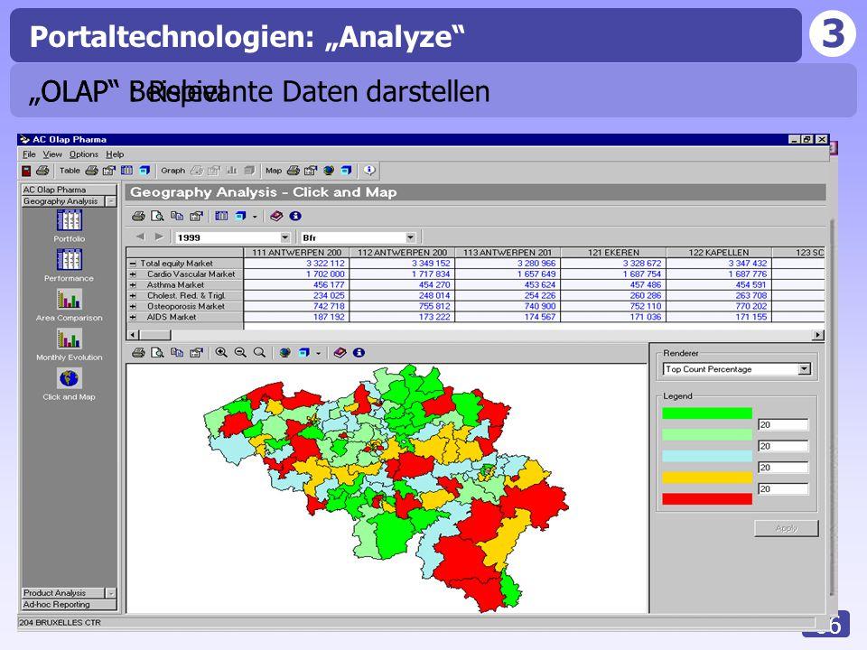 "Portaltechnologien: ""Analyze"