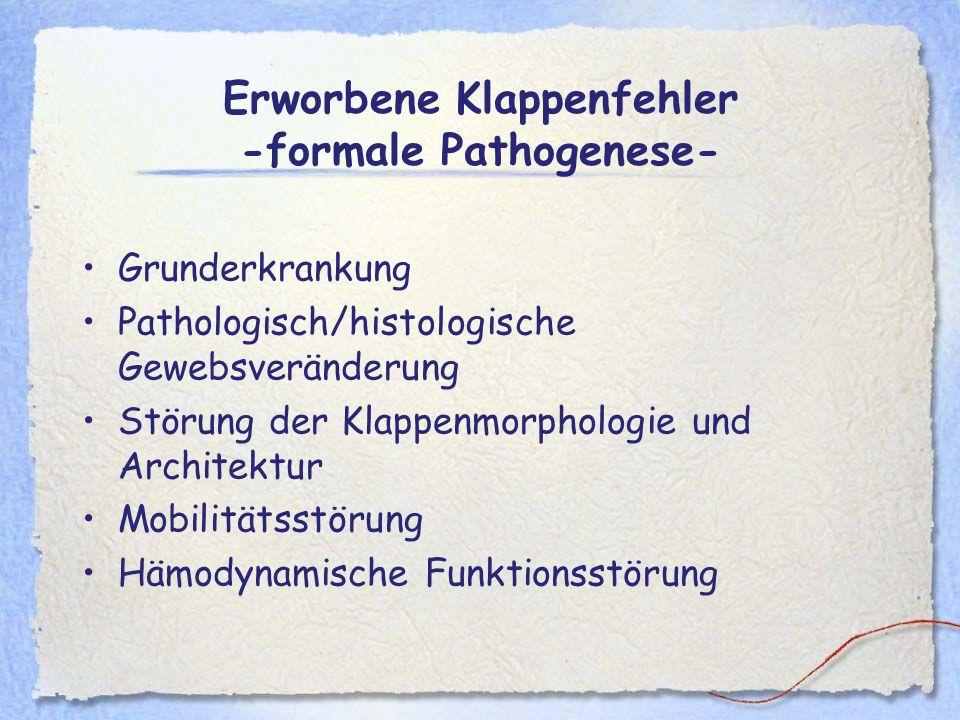 Erworbene Klappenfehler -formale Pathogenese-