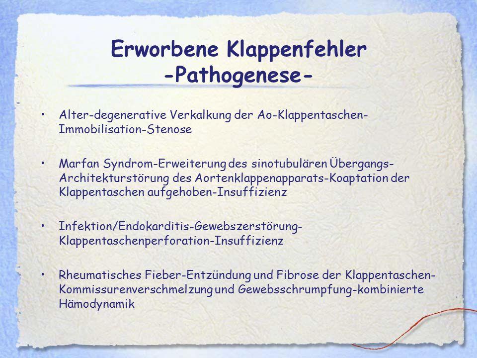 Erworbene Klappenfehler -Pathogenese-