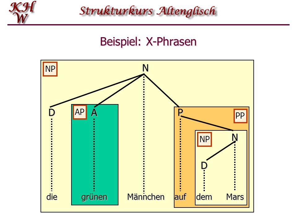 Beispiel: X-Phrasen N D A P N D NP AP PP NP die grünen Männchen auf