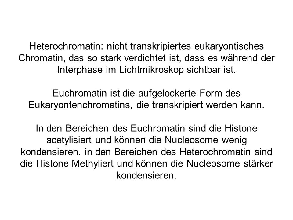 Heterochromatin: nicht transkripiertes eukaryontisches Chromatin, das so stark verdichtet ist, dass es während der Interphase im Lichtmikroskop sichtbar ist.