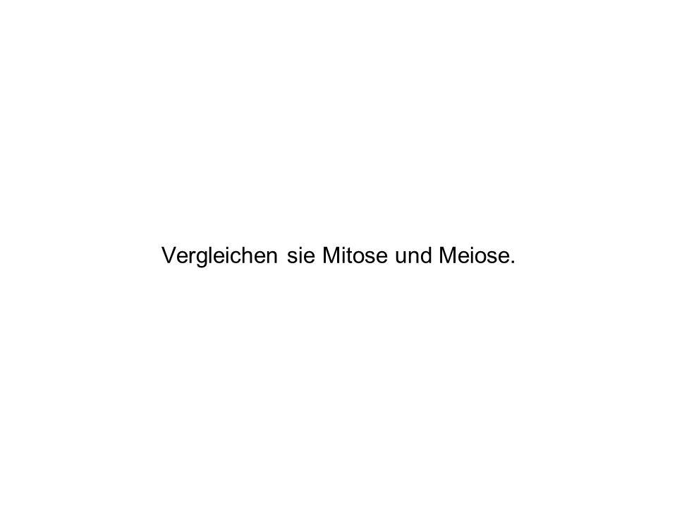 Vergleichen sie Mitose und Meiose.