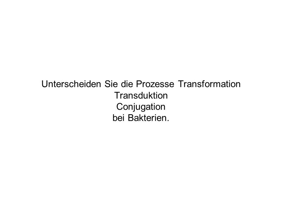 Unterscheiden Sie die Prozesse Transformation Transduktion Conjugation bei Bakterien.
