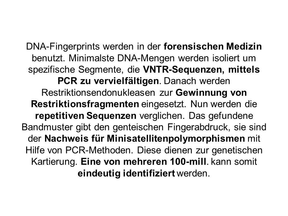DNA-Fingerprints werden in der forensischen Medizin benutzt