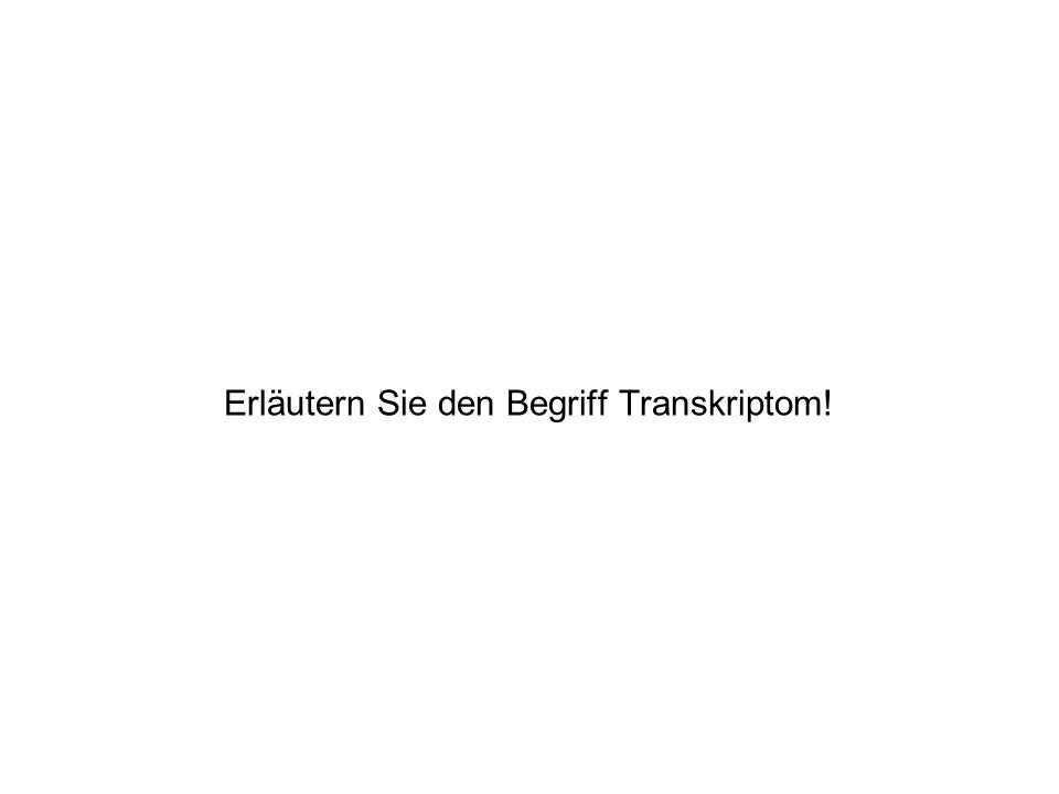 Erläutern Sie den Begriff Transkriptom!