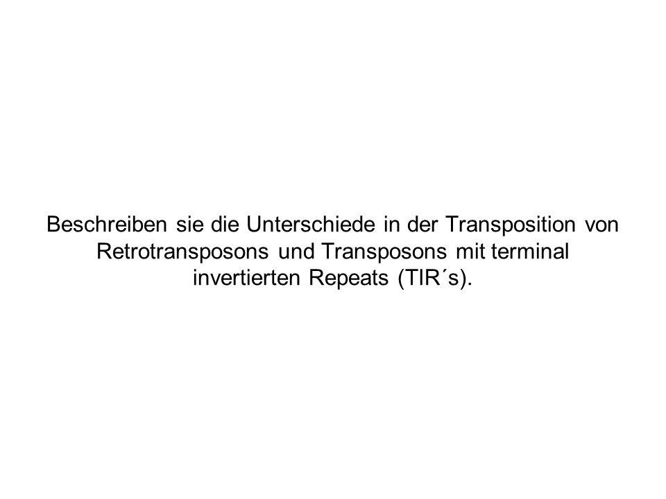Beschreiben sie die Unterschiede in der Transposition von Retrotransposons und Transposons mit terminal invertierten Repeats (TIR´s).