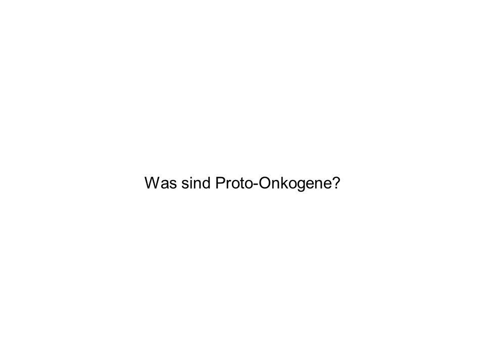 Was sind Proto-Onkogene