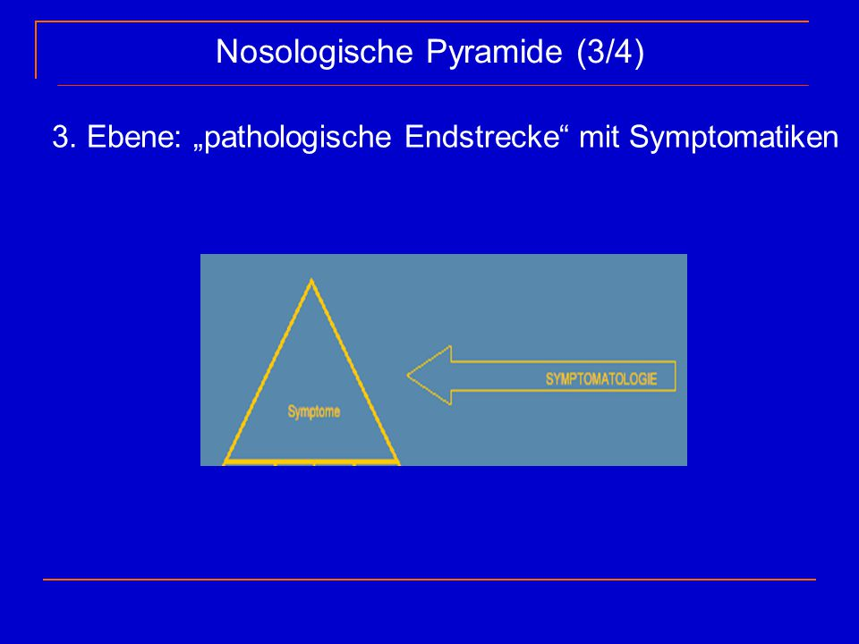 Nosologische Pyramide (3/4)