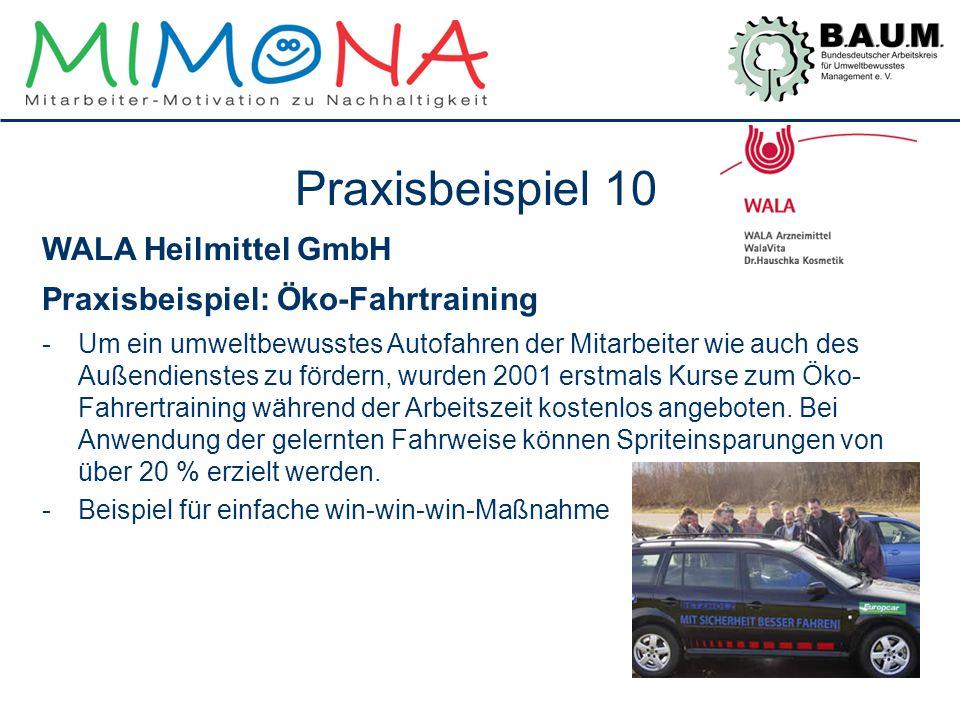 Praxisbeispiel 10 WALA Heilmittel GmbH