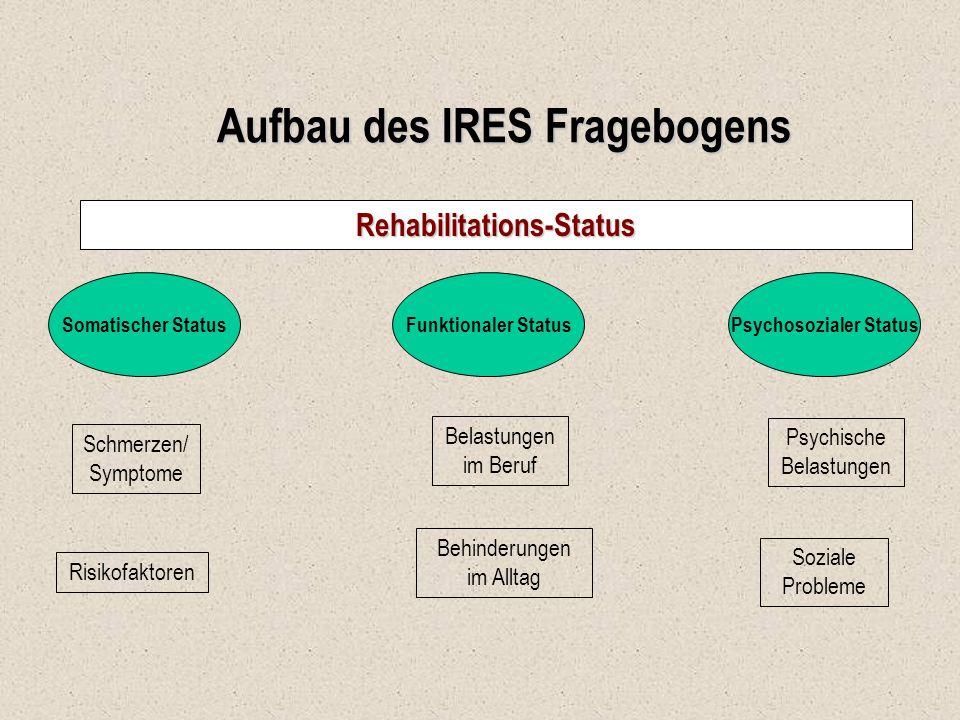 Aufbau des IRES Fragebogens
