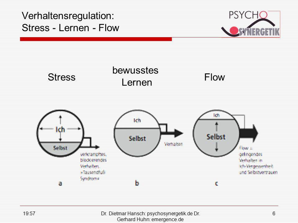 Verhaltensregulation: Stress - Lernen - Flow