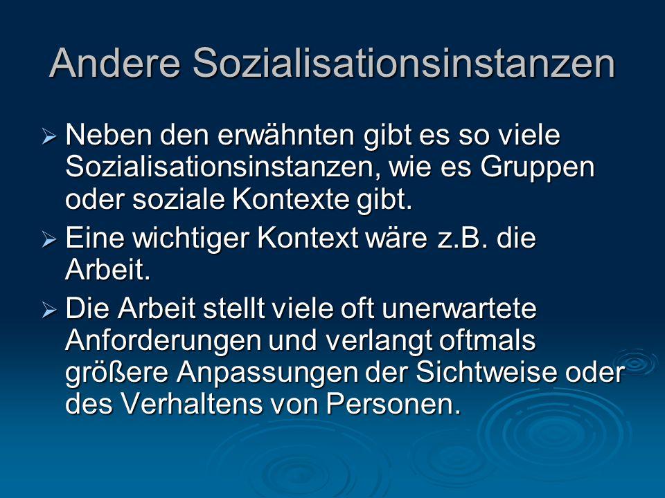 Andere Sozialisationsinstanzen