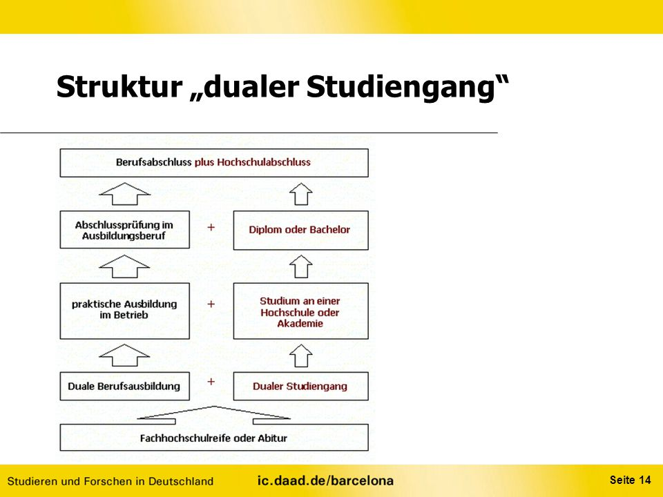 """Struktur """"dualer Studiengang"""