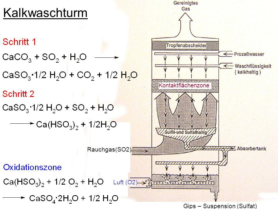 Kalkwaschturm Rauchgas(SO2) Luft (O2) Gips – Suspension (Sulfat)