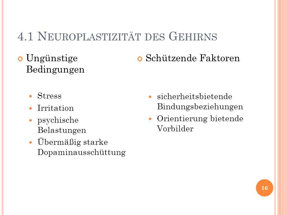 4.1 Neuroplastizität des Gehirns