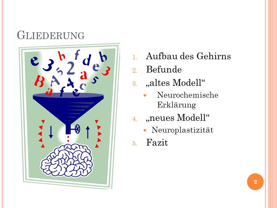 """Gliederung Aufbau des Gehirns Befunde """"altes Modell """"neues Modell"""
