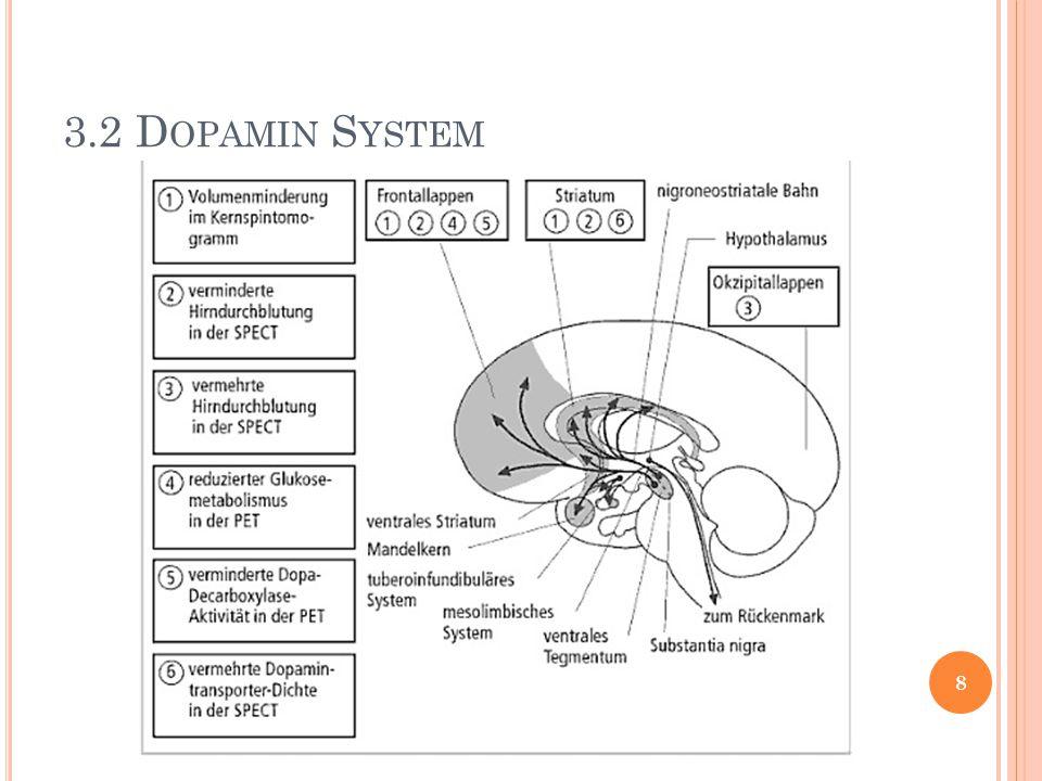 3.2 Dopamin System