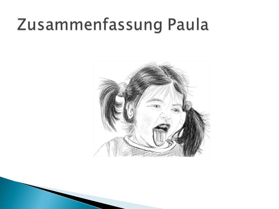Zusammenfassung Paula