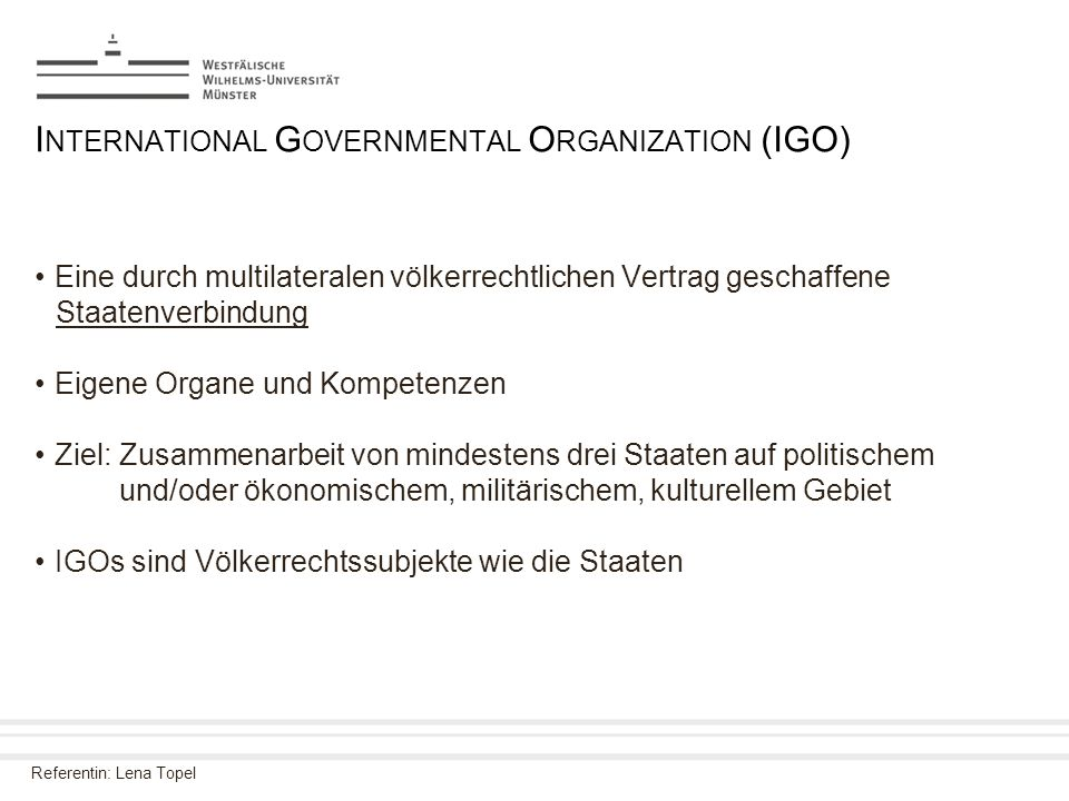 International Governmental Organization (IGO)
