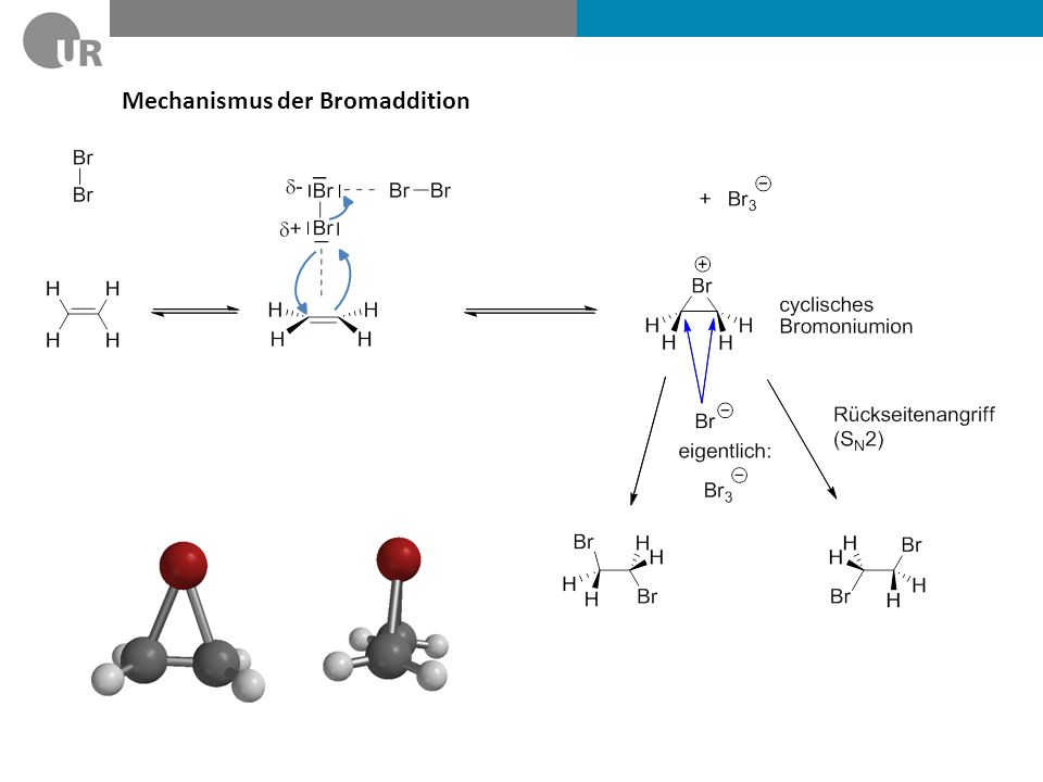 Mechanismus der Bromaddition