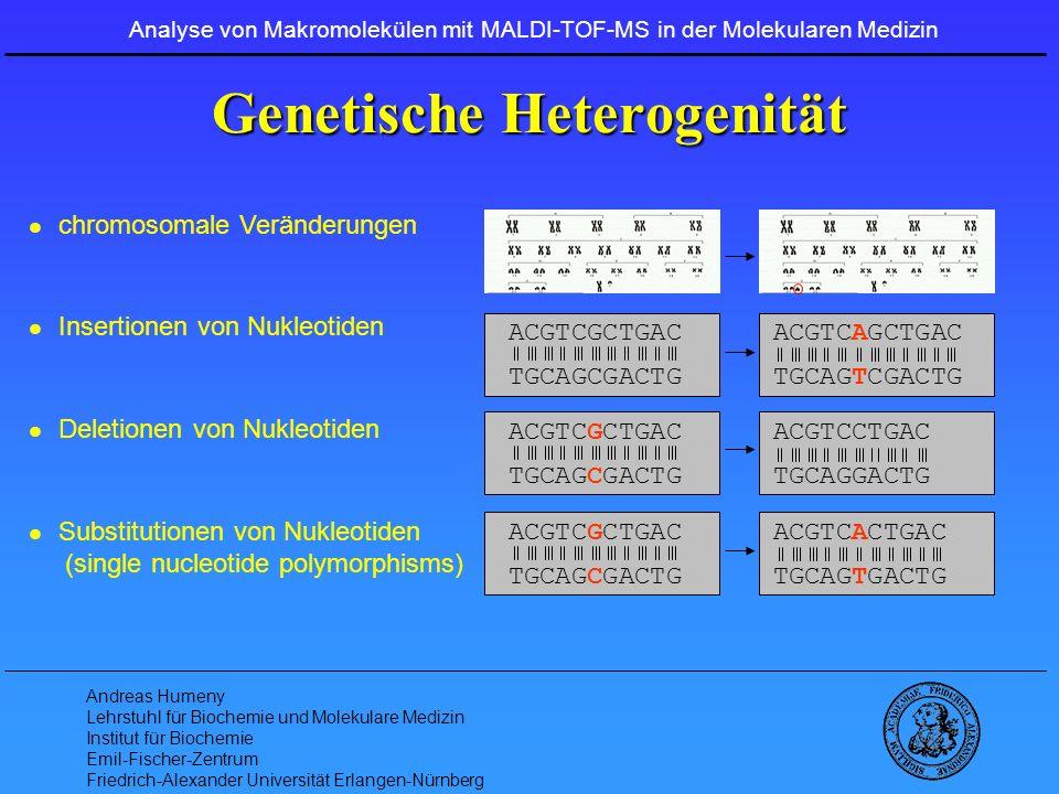 Genetische Heterogenität