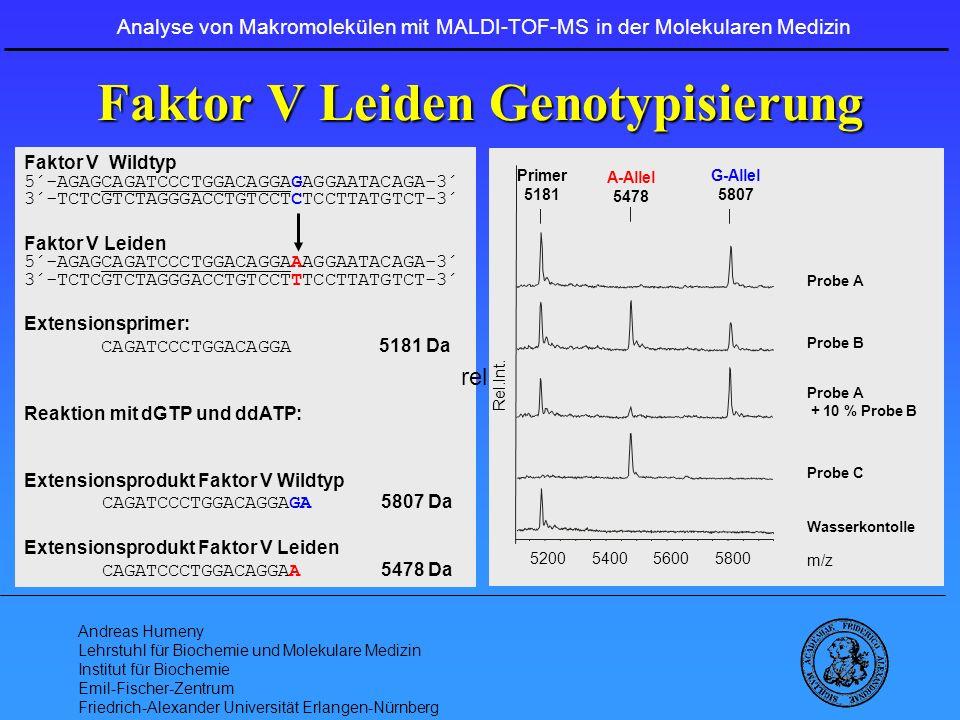 Faktor V Leiden Genotypisierung