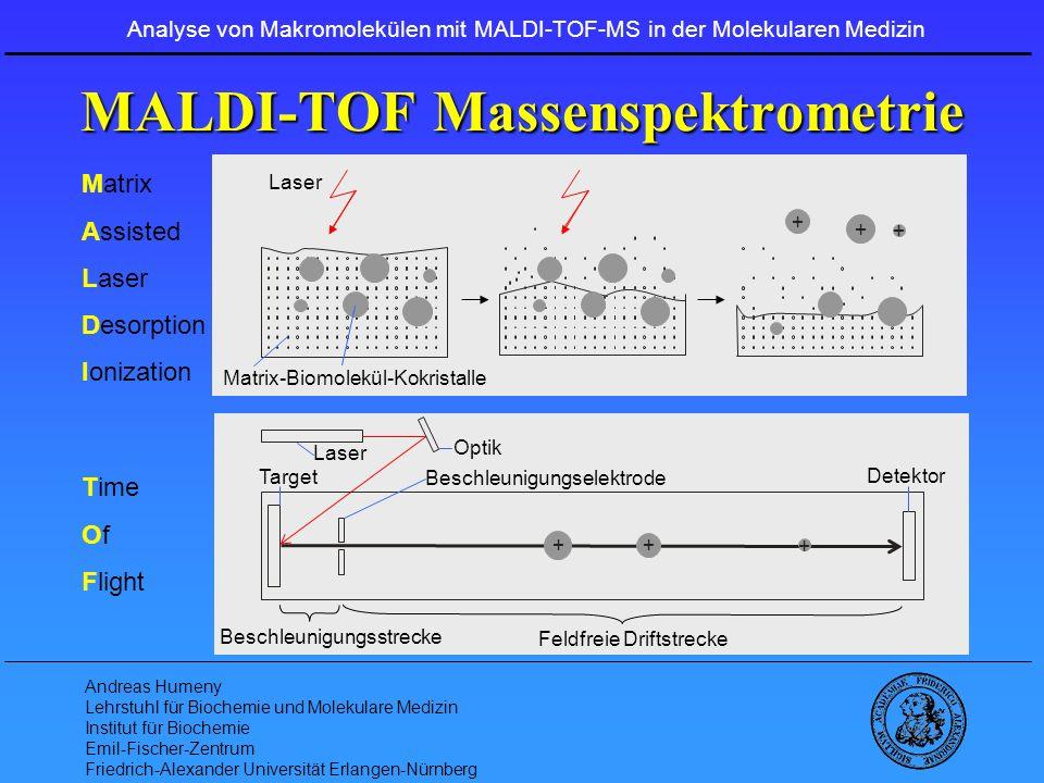 MALDI-TOF Massenspektrometrie
