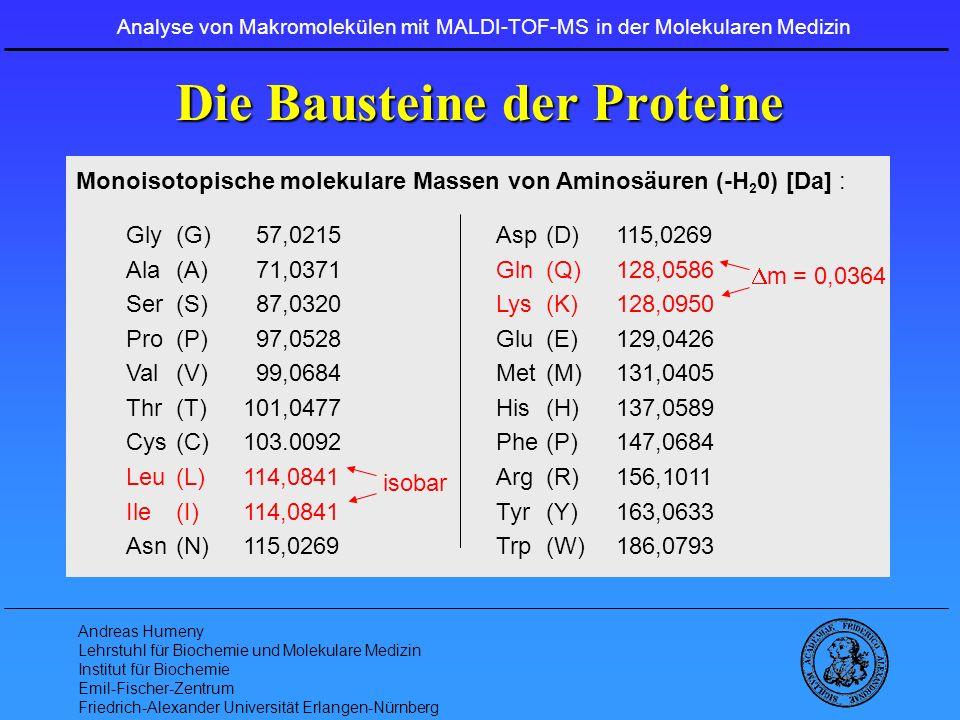 Die Bausteine der Proteine