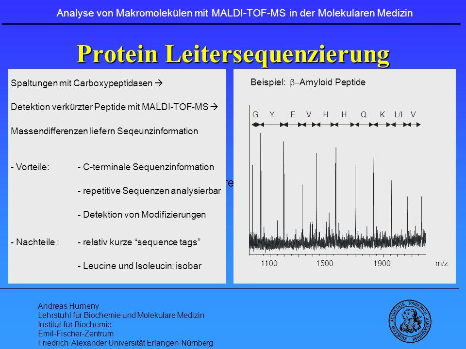 Protein Leitersequenzierung