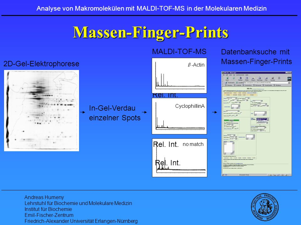 Massen-Finger-Prints