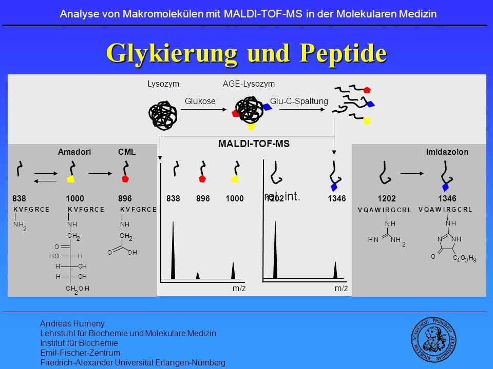 Glykierung und Peptide