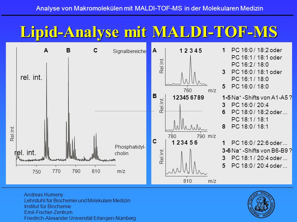 Lipid-Analyse mit MALDI-TOF-MS