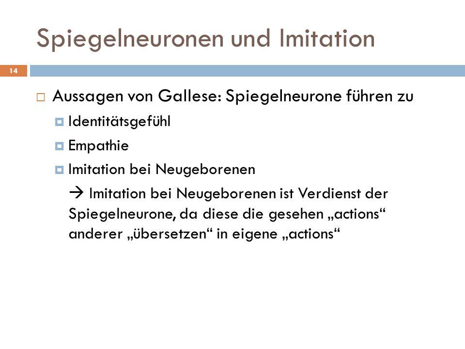 Spiegelneuronen und Imitation