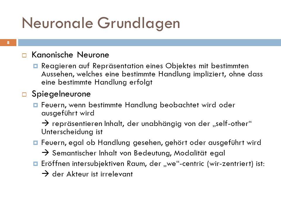 Neuronale Grundlagen Kanonische Neurone Spiegelneurone