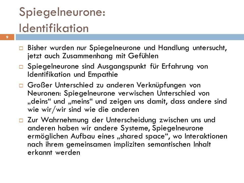 Spiegelneurone: Identifikation