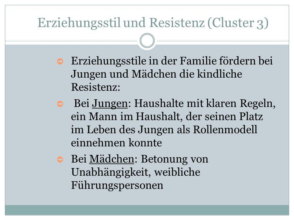 Erziehungsstil und Resistenz (Cluster 3)