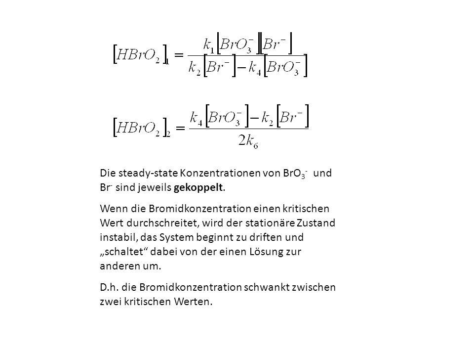 Die steady-state Konzentrationen von BrO3- und Br- sind jeweils gekoppelt.