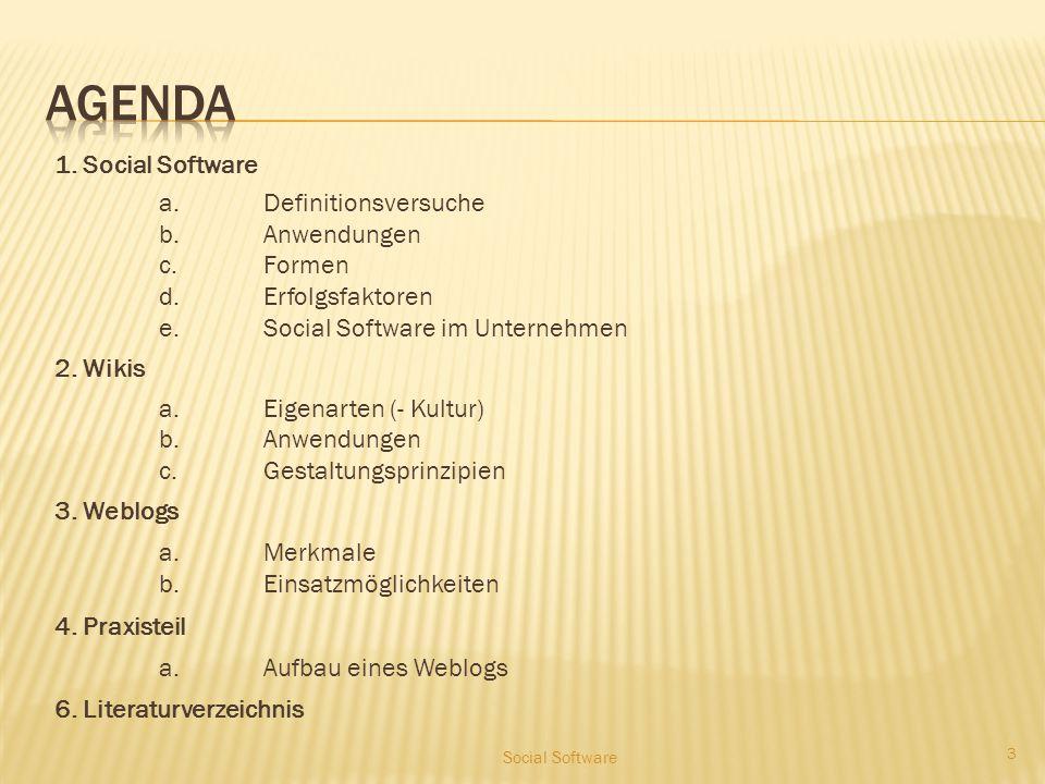 Social software Daniel Pacht, Mirko Schilling