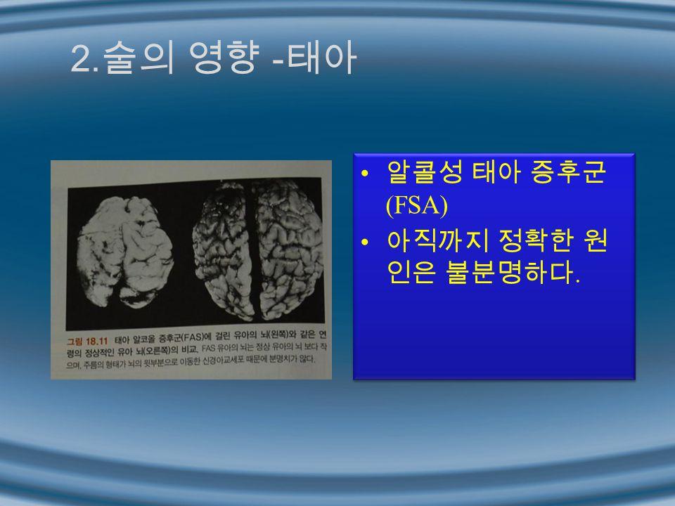 2.술의 영향 -태아 알콜성 태아 증후군(FSA) 아직까지 정확한 원인은 불분명하다.