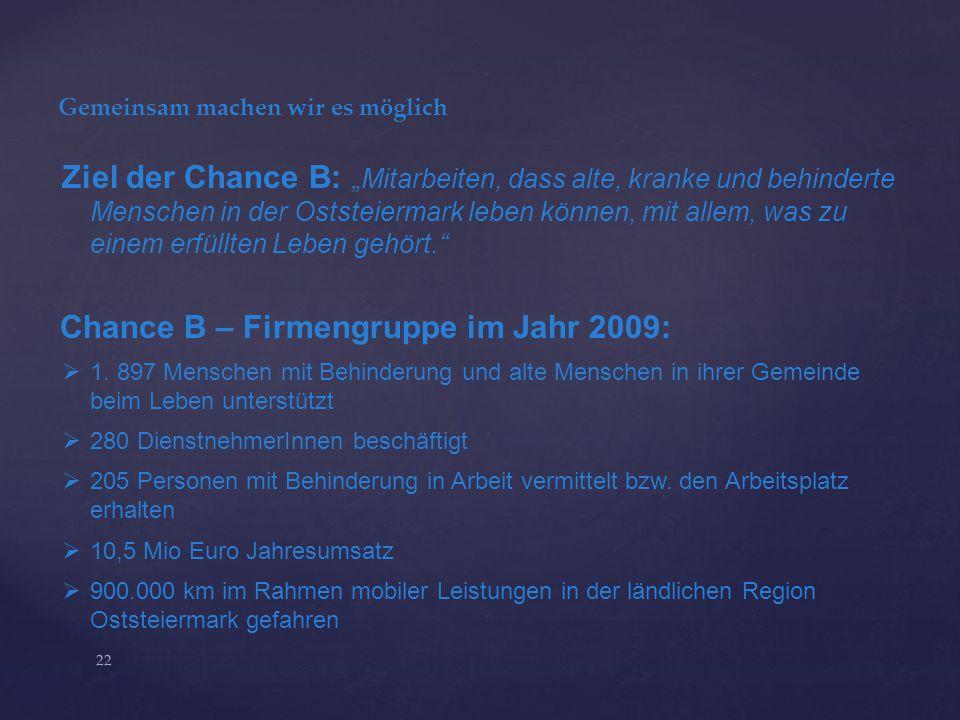 Chance B – Firmengruppe im Jahr 2009: