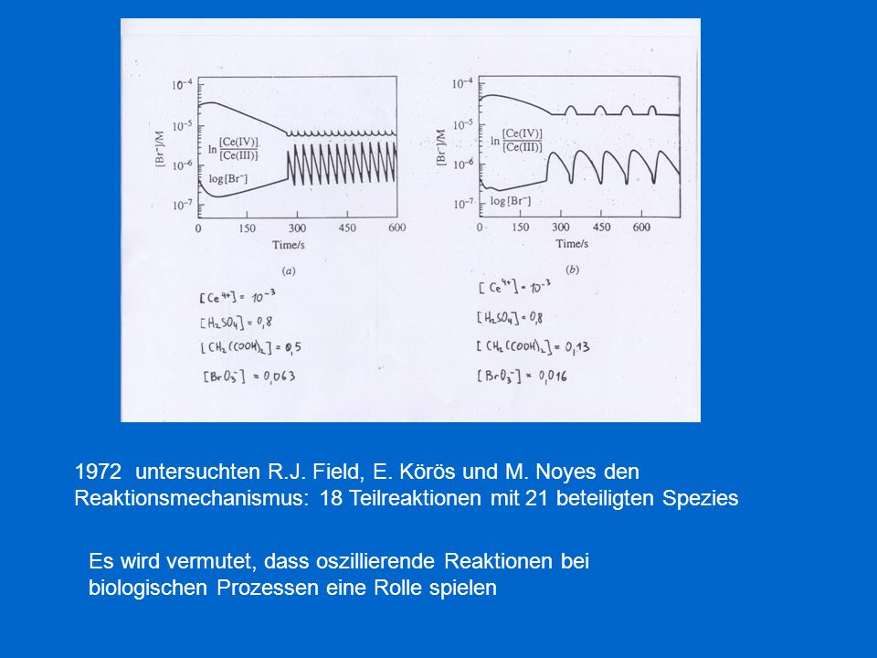 1972 untersuchten R. J. Field, E. Körös und M