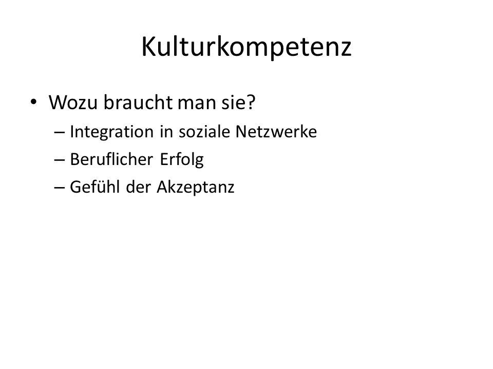 Kulturkompetenz Wozu braucht man sie Integration in soziale Netzwerke