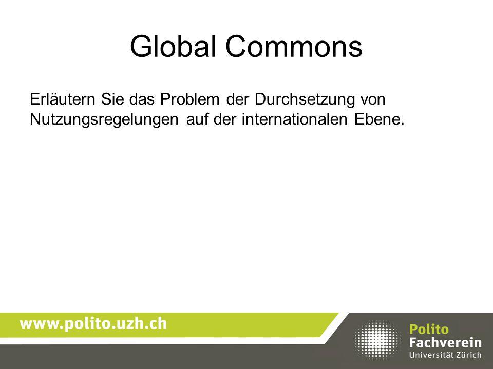 Global Commons Erläutern Sie das Problem der Durchsetzung von Nutzungsregelungen auf der internationalen Ebene.