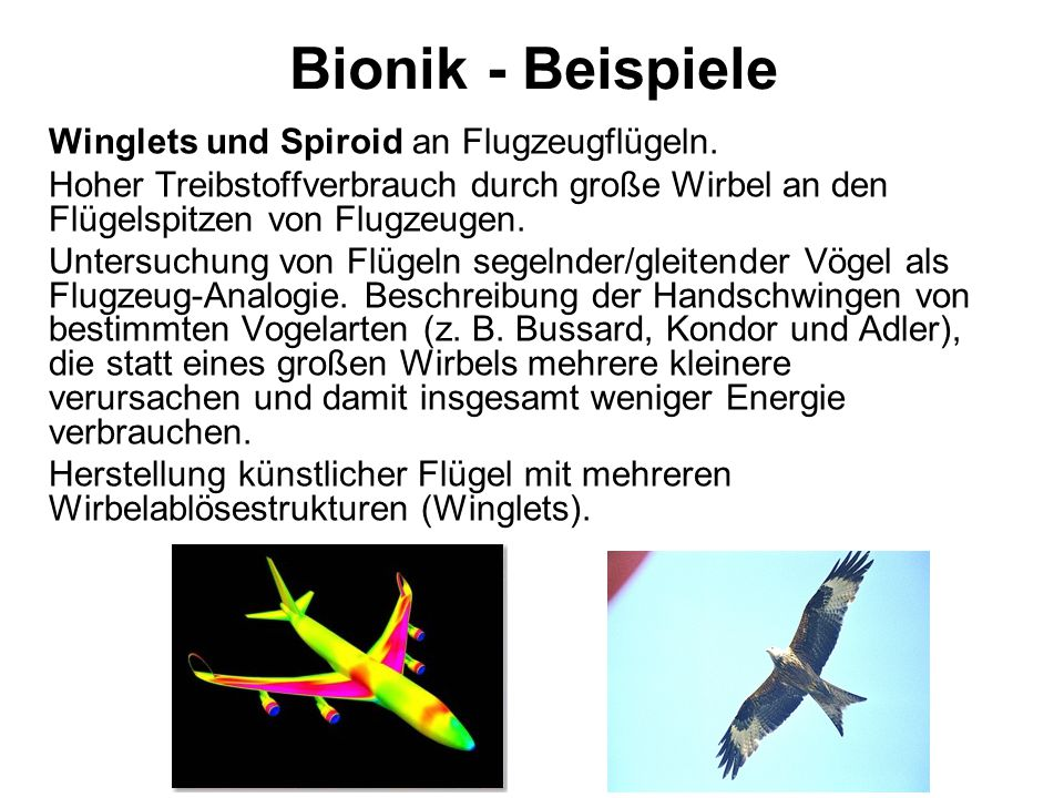 Bionik - Beispiele Winglets und Spiroid an Flugzeugflügeln.