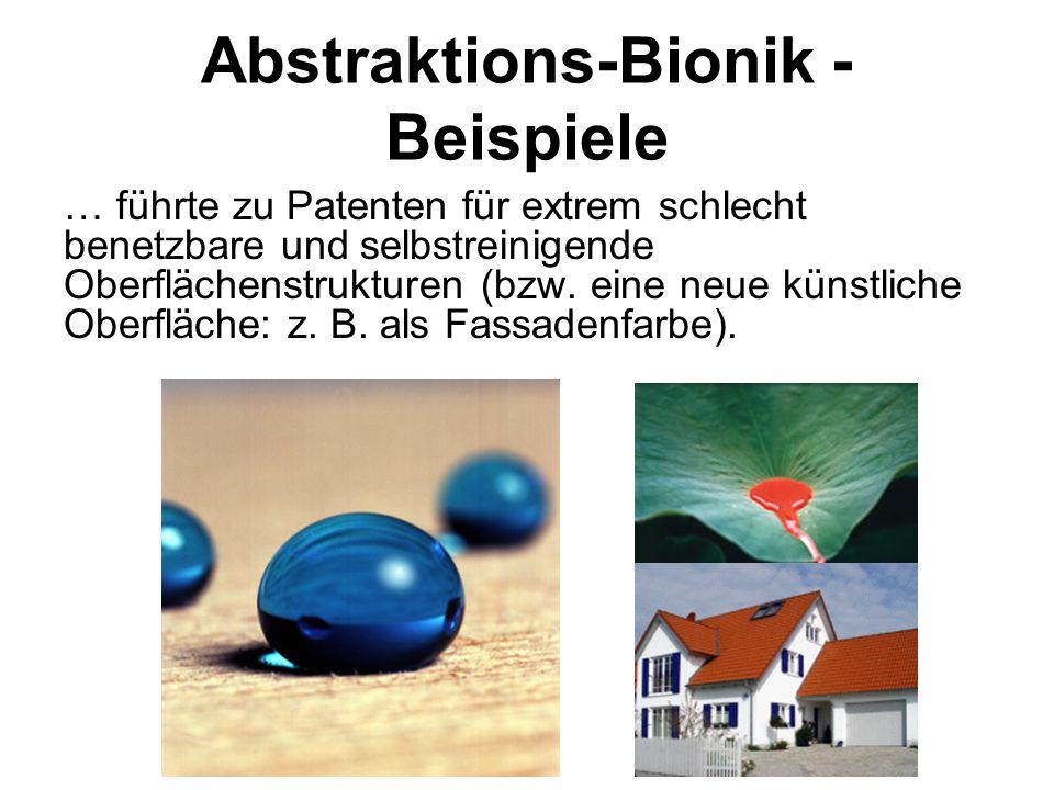 Abstraktions-Bionik - Beispiele