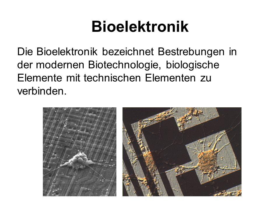 Bioelektronik Die Bioelektronik bezeichnet Bestrebungen in der modernen Biotechnologie, biologische Elemente mit technischen Elementen zu verbinden.