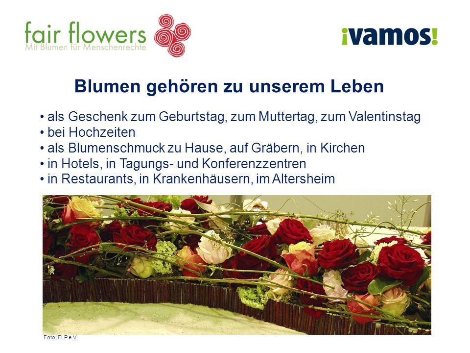 Blumen gehören zu unserem Leben